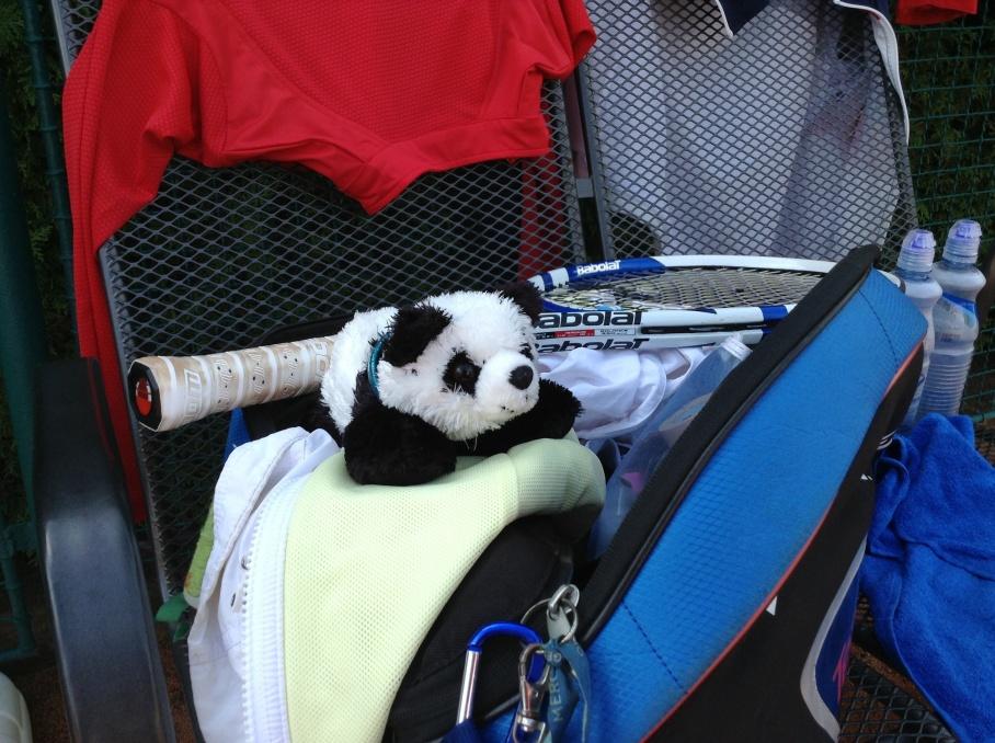 Meet CZECHie, the Panda.  Team mascot.